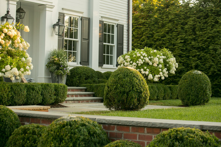 Designed by Janice parker, this home's manicured hedges, flowering bushes, and potted plants make a g